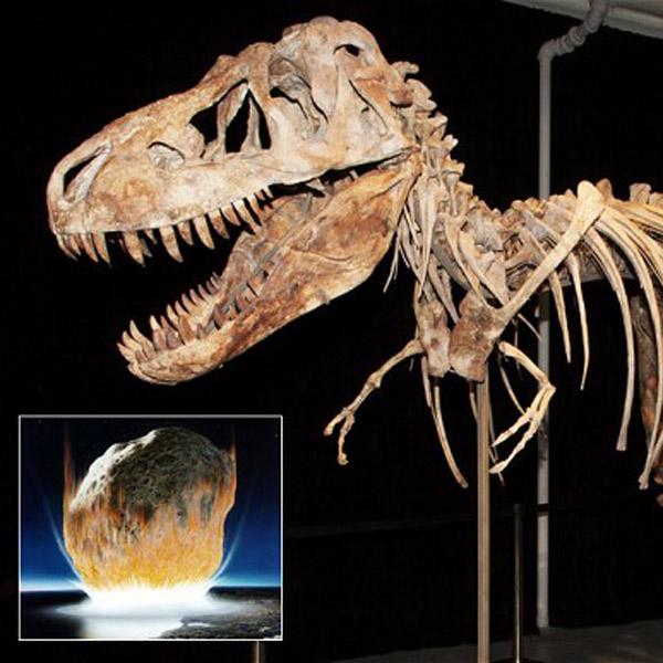 археология,динозавры,вымирание,катастрофа, Динозавры вымерли вследствие бунта природы и удара астероида