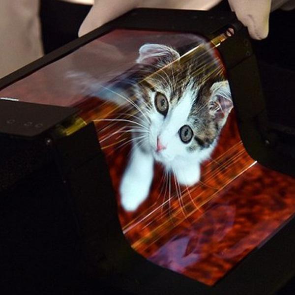 дисплей, В Японии создан необычайно гибкий  OLED-дисплей