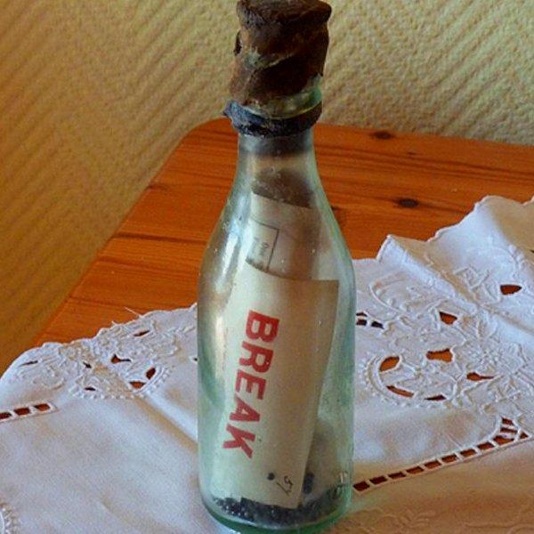 Великобритания, Германия, история, общество, море, В Германии нашли, возможно, старейшее в мире послание в бутылке